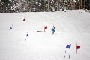 FFW Ufg 20150228 Skirennen 017